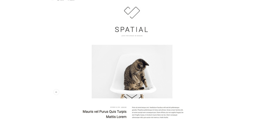 picture_of_a_cat_sitting_on_a_chair_via_spatial_theme